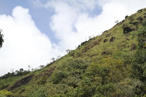 Mullayanagiri_017