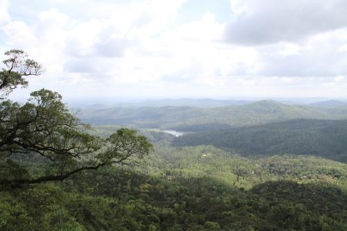 Mullayanagiri_056