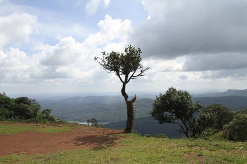 Mullayanagiri_062