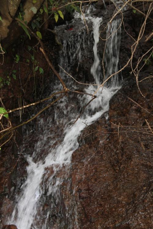 Mullayanagiri_107